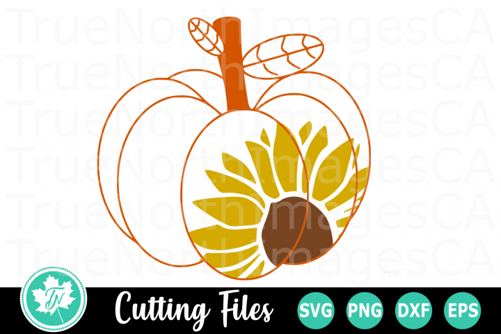 Sunflower Pumpkin - A Fall SVG Cut File