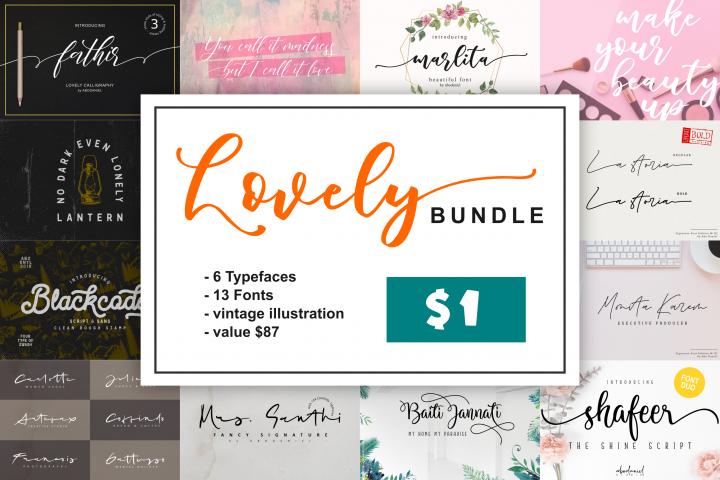 Lovely Bundle -Fonts & Illustration -
