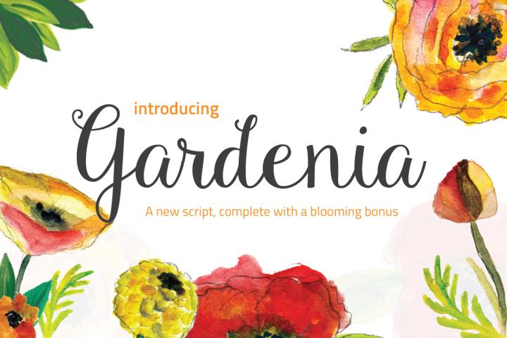 Gardenia + Blooming Bonus
