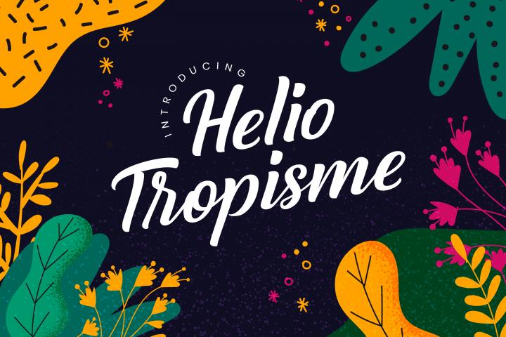 Helio Tropisme