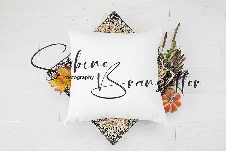 Styled Stock Photography Square White Pillow Fall Mockup