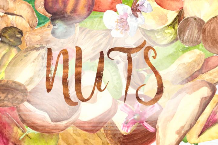 Nuts - Watercolor Clip Art Set