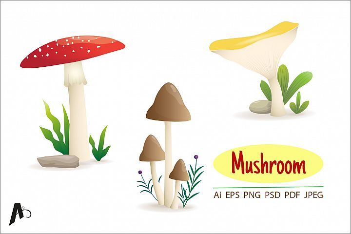 Different kinds of mushroom illustration.