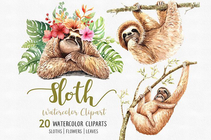 Sloth. Animals watercolor clip art