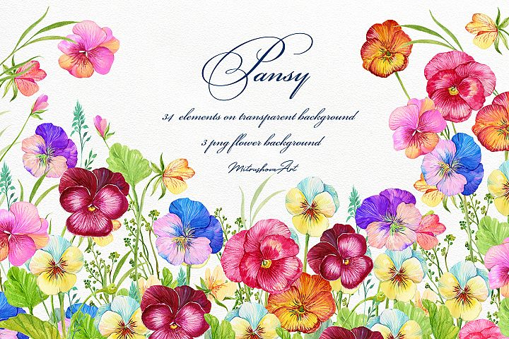 Pansy Watercolor Clipart