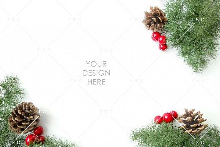 Christmas Stock Photo / Background Image / Pine Cone