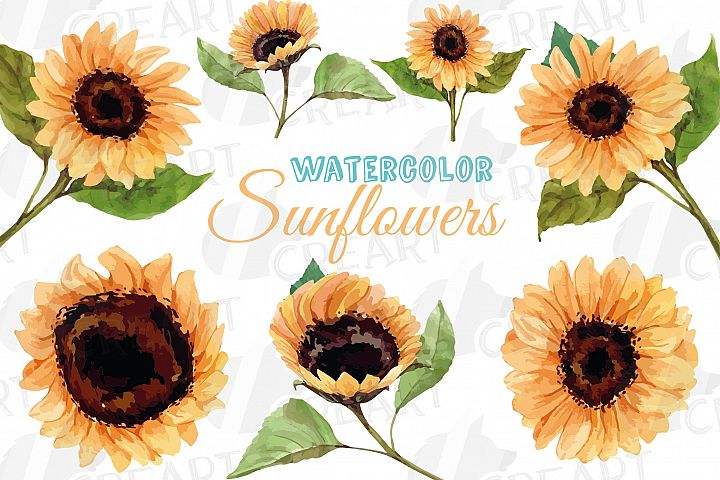 Sunflower watercolor decoration clip art pack. diy decor