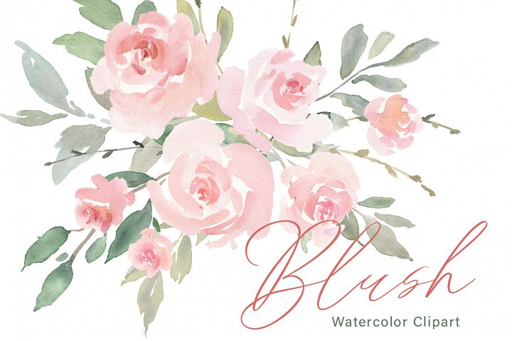 Pink Blush Watercolor Flowers Roses PNG Collection