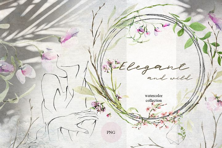 Elegant and wild flowers. Watercolor collection
