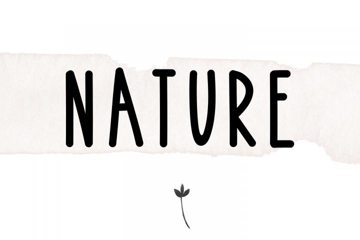 Bonfire - A Bold Handwritten Font - Free Font of The Week Design6