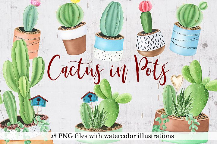 Watercolor Cactus in Pots