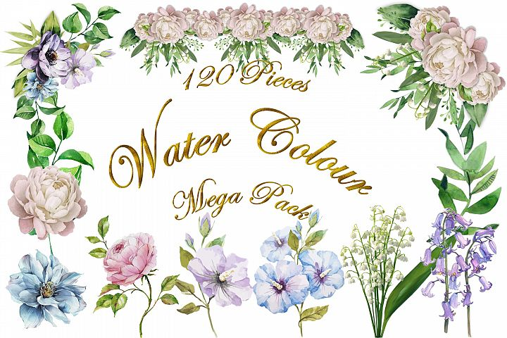 Water colour clipart bundle 120 pieces Commercial Use