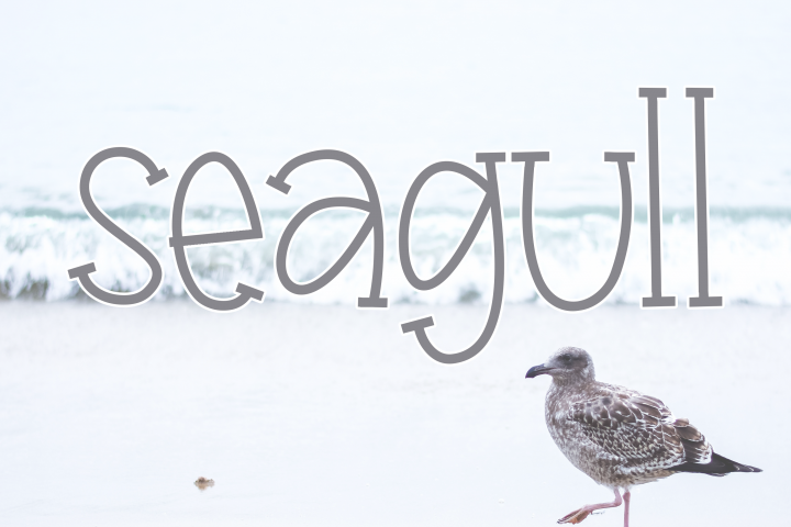 Seagull - A Fun Handwritten Font - Free Font of The Week Design 7