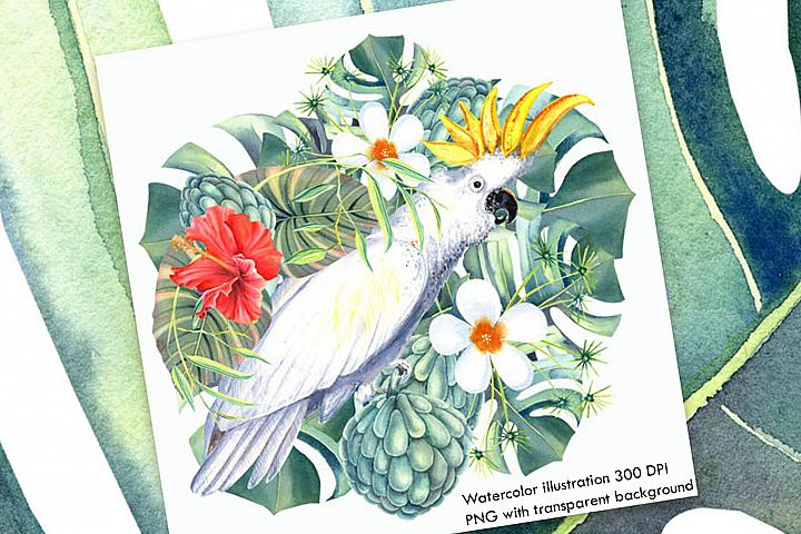 Watercolor Tropical Illustration II