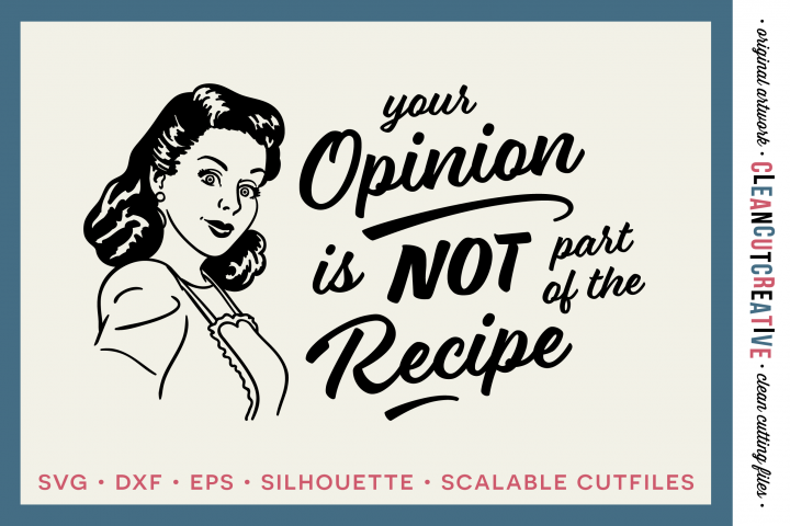YOUR OPINION IS NOT PART OF THE RECIPE! Funny Kitchen quote