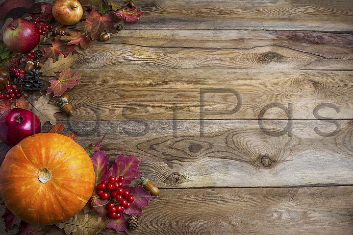 Thanksgiving or fall greeting background with orange pumpkin