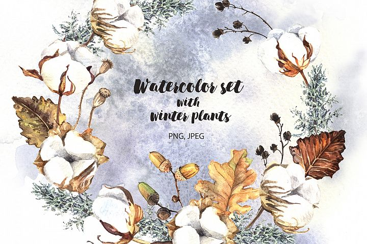 Watercolor set with winter plants