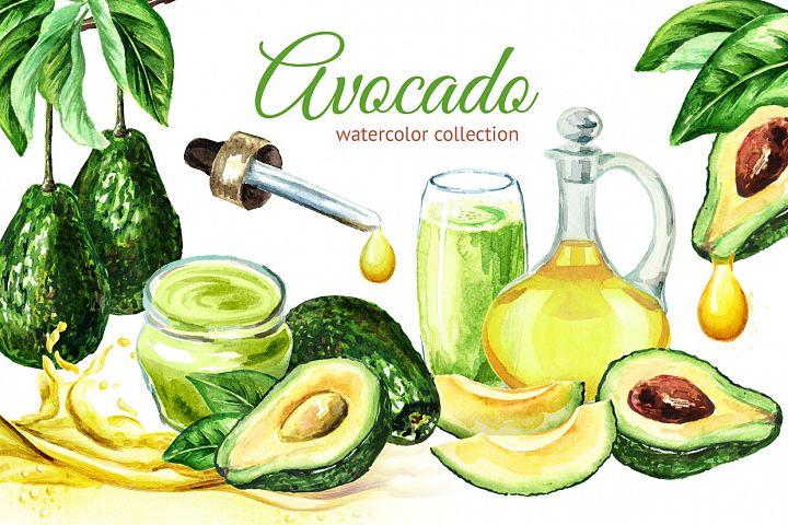 Avocado. Watercolor collection