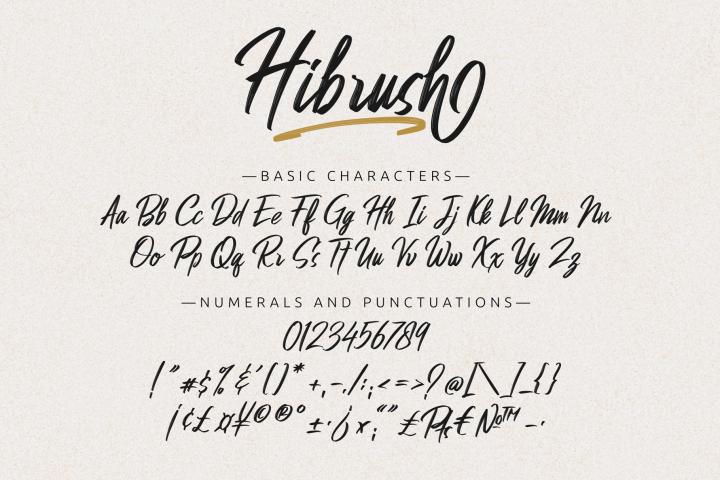 Hibrush example image 11