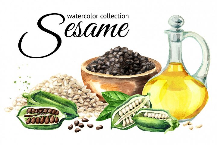 Sesame. Watercolor collection