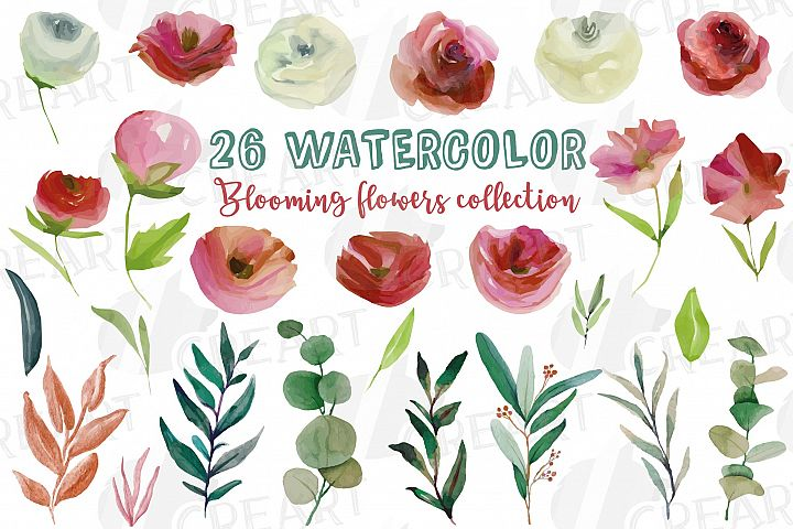 Floral blooming burgundy white pink watercolor wedding png