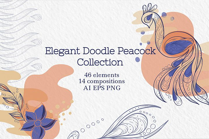 Elegant Doodle Peacock Collection