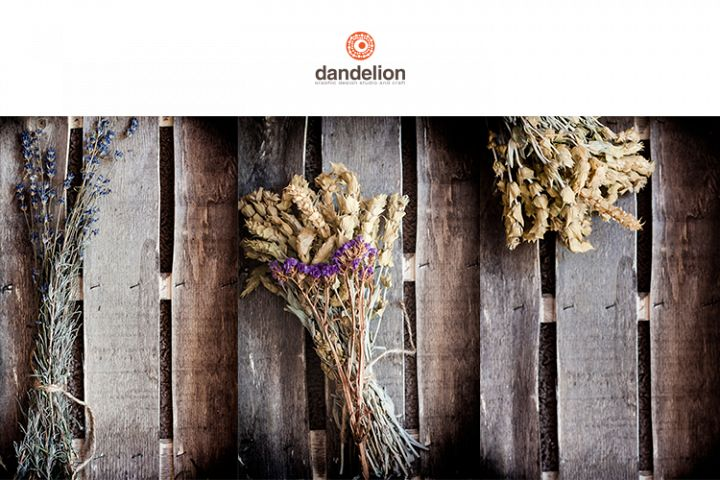 Dried flowers on wood