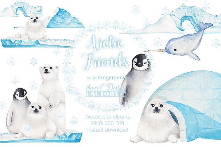 Arctic watercolor Clipart