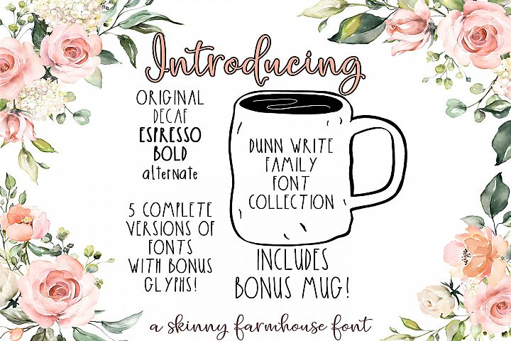 The Dunn Write Farmhouse Skinny Font Collection