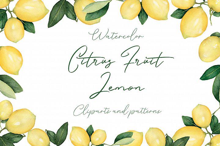 Watercolor Citrus Fruit Lemon