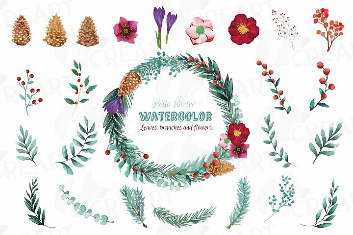 Winter flowers and leafs clip art pack, watercolor floral