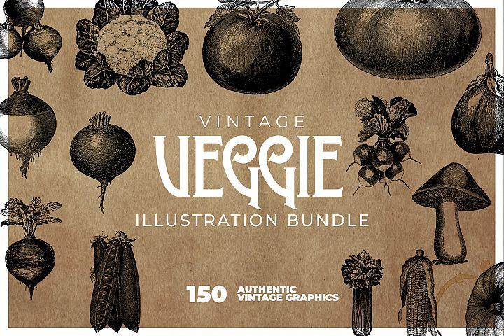Vintage Vegeable Graphics Bundle