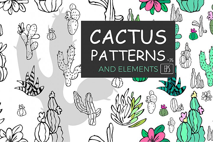Cactus set. Cactus and succulent. Patterns and elements.