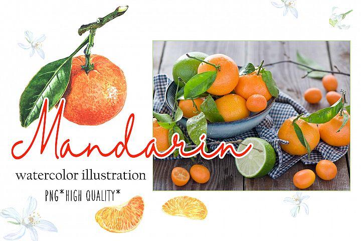 Mandarin watercolor set