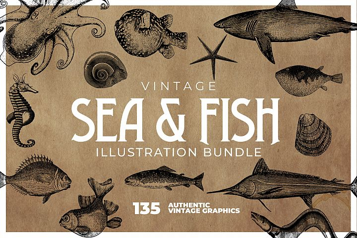 135 Sea Creatures and Fish Illustrations