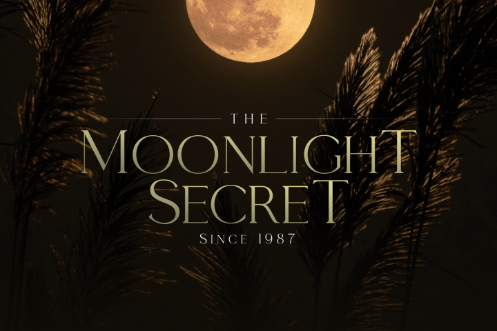 Moonlight Secret - by Giveaway Serif Font