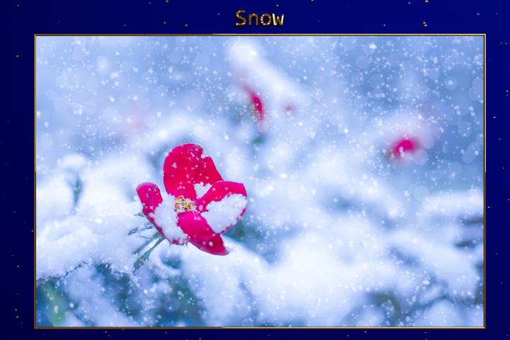 XMAS - Christmas Snow Lr Presets