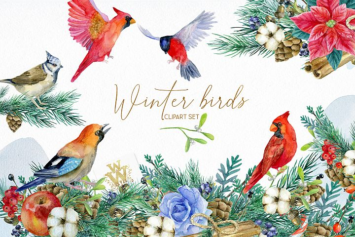 Winter birds Christmas clipart, wedding invitation birthday