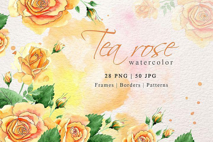 Watercolor tea yellow rose png set