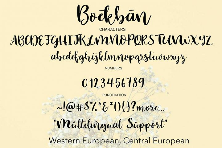 Boekban example image 8