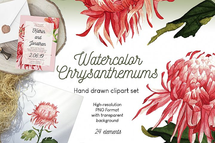 Watercolor chrysanthemums