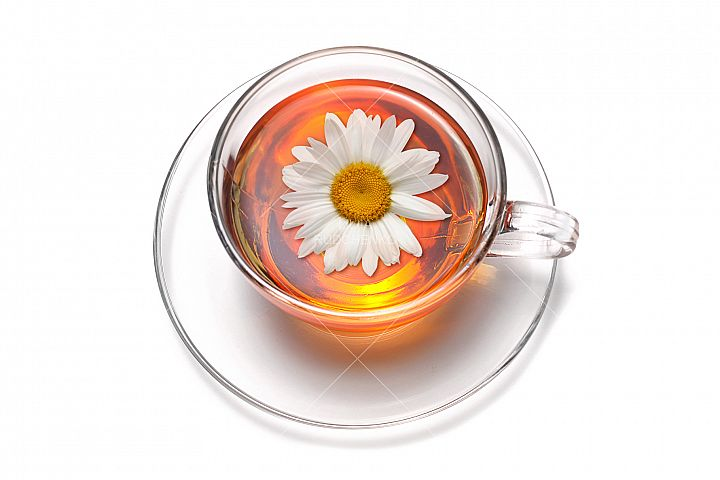 Tea cup with Chamomile flower