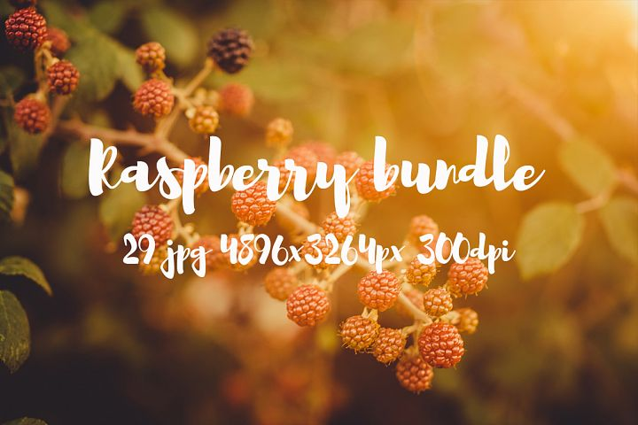 Raspberry photo pack