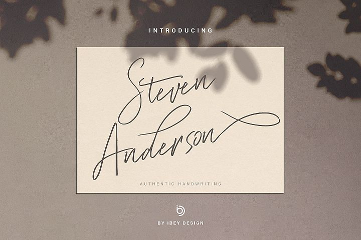 Steven Anderson - Authentic Handwriting