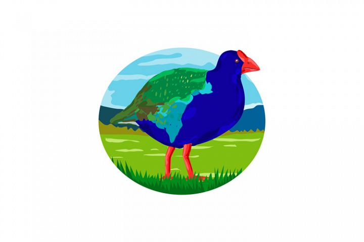 South Island Takahe Bird Oval Retro