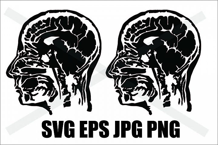 Head X-Ray - SVG-EPS-JPG-PNG