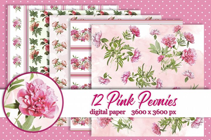 12 Pink peony digital paper Background Flower texture
