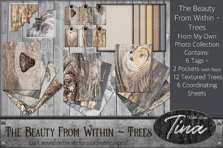 Beautiful Tree Rings Textured Surfaces Rustic Pockets Tags