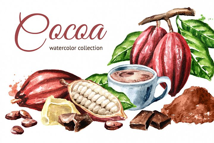 Cocoa. Watercolor collection