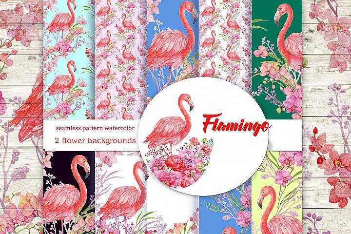 Flamingo seamless patterns